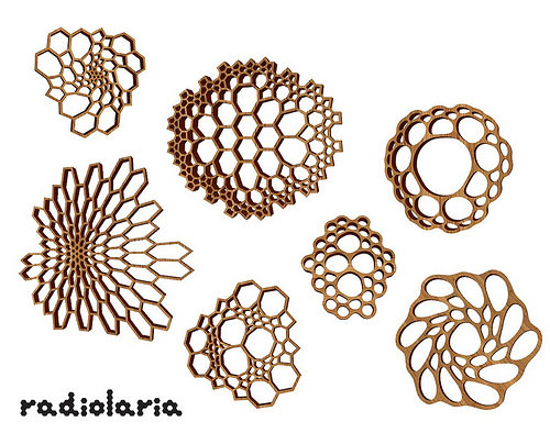 nervous-system-radiolaria-jewelry-bamboo